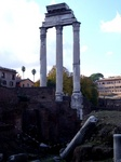 Columns from the Vespasianus temple